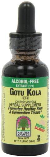 Réponse de l'alcool gratuit Nature Gotu Kola Herb, une once-Fluid