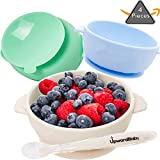 4 Piece Silicone Baby Bowls Set with Guaranteed Suction and Spoon   UpwardBaby   for Babies Kids Toddlers   BPA Free   See Video Demonstration