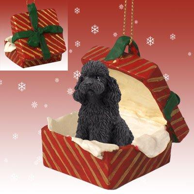 - Conversation Concepts Poodle Black w/Sport Cut Gift Box Red Ornament