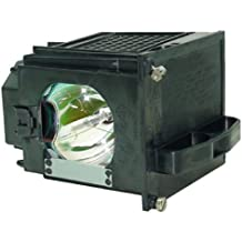 Mitsubishi 915P049010 Replacement Projection Lamp - Bulb and Housing
