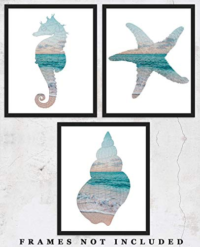 Starfish, Seahorse & Sea Shell Wall Art Print: Unique Beach House Decor - Set of Three (8x10) Unframed Pictures - Great Gift Idea Under $15!]()