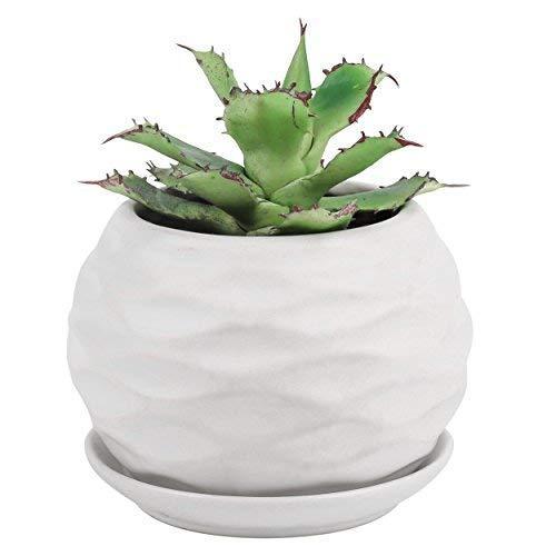 Pure.Lifestyle Nest Shape Succulent Plant Pot, Ceramic Cactus Plant Pot with Tray, Flower Seedlings Nursery Pot Container Planter – Matte White