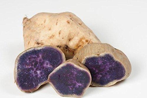 White skin purple yam, Japanese purple potato or Japanese Sweet Potato(1 Pound)