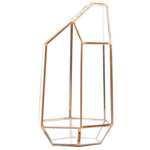Koyal Wholesale Geometric Terrarium Glass Table Decoration, Planter for Succulents, Cactus, Air Plants, Indoor Plants, Outdoor Plants (Irregular, Copper)
