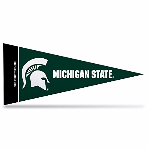 Mini Ncaa Pennants (NCAA 8 Piece Mini Pennant Set , Green)