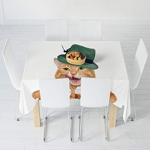 Waterproof Tablecloth,Cat,for Dining-Table Tea Table Desk Secretaire,63 X 63 Inch,Cool Cat with Hat and Beer Mugs