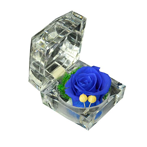 Precious Preserved Fresh Rose Crystal product image