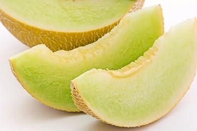 Honeydew Green Melon Seeds