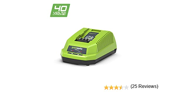 Greenworks Tools 682910907 Cargador Universal, 40 V, Verde: Amazon ...