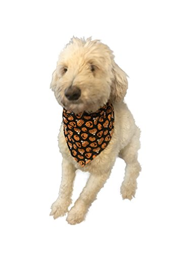 Medium and Large Dog Bandana Scarf for Halloween Pumpkin Jack-O-Lantern -