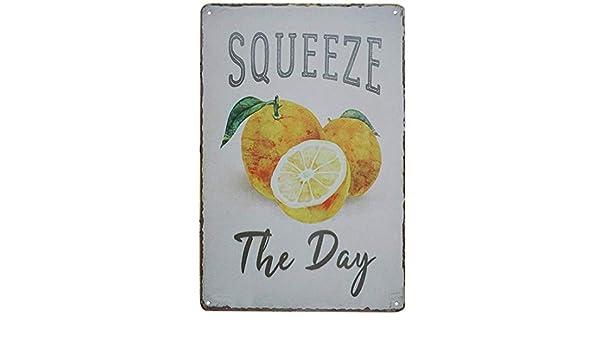 Shunry Squeeze The Day Placa Cartel Vintage Estaño Signo Metal De ...