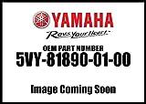 Yamaha 5VY-81890-01-00 Motor Assembly; 5VY818900100