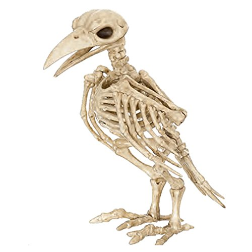(Takefuns Halloween Bone Skeleton Raven Plastic Animal Skeleton Horror Decoration Prop Bird Crow Skeleton)