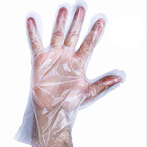 Disposable Poly PE Gloves Food Service Safety Glove(Size:500 Count)