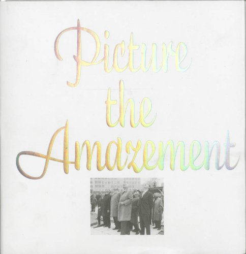 Download Picture the Amazement ebook