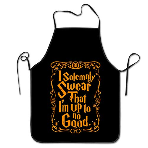 NVJUI JUFOPL Cooking Kitchen Chef Apron Funny Bib Aprons for Women Men - I Solemnly Swear That I am Up to No Good