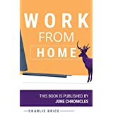 Work from home:  10 ways to make money online and tips&tricks to start your freelancing career