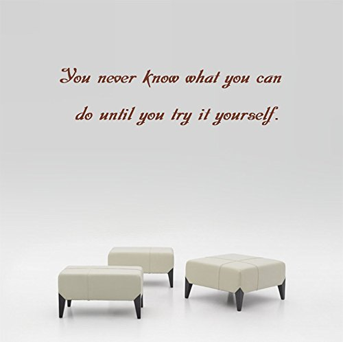 You never know what you can do until you try it yourself. Wall Decal Sticker Art Mural Home Decor Quote Size: 9'' x 24'' Do It Yourself Murals