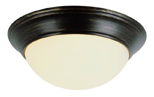 Trans Globe Lighting 57702 ROB Indoor  Athena 16