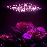 VIVOSUN 1200W Cree COB Led Grow Light Full Spectrum
