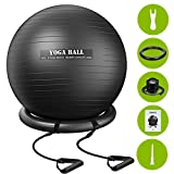 TOPELEK Exercise Ball (75cm),Anti-Burst Yoga Ball for Fitness,Pilates