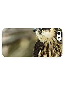 High-quality Protection For Iphone 5C Case Cover (hawk One Piece)