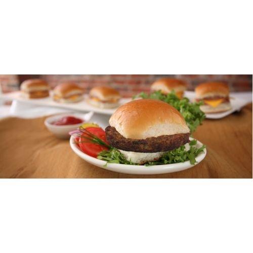 Guiltless Gourmet High Protein Meatless Garden Burger, 2.5 Ounce -- 48 per case.
