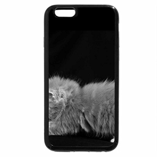 iPhone 6S Case, iPhone 6 Case (Black & White) - Little Cat