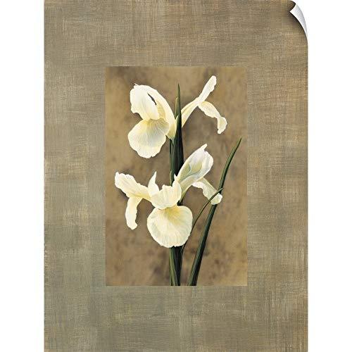 - CANVAS ON DEMAND Iris Wall Peel Art Print, 12