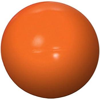 Pet Supplies : Pet Toy Balls : Jolly Pets 14-Inch Push-n