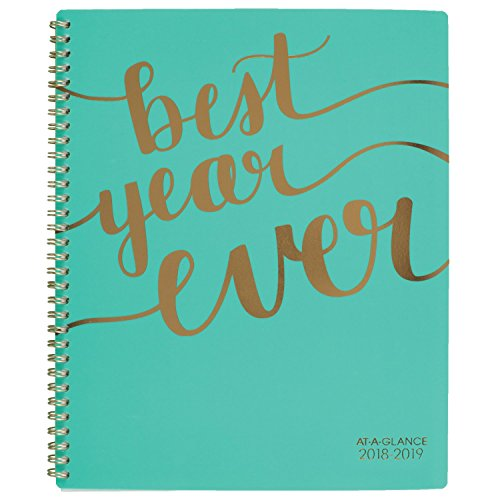2018-2019 Academic Year Weekly & Monthly Planner, Large, Mint Deal (Large Image)