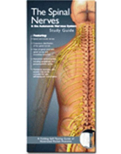 Anatomical Chart Company's Illustrated Pocket Anatomy: The Spinal Nerves & The Autonomic Nervous System Study Guide 11 Panels / 10 Full-color Illustrations / 9