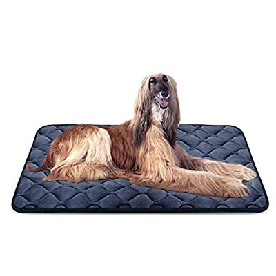 Dog Bed Mat Washable - Soft Fleece Crate Pad - Anti-Slip Matress for Small Medium Large Pets by HeroDog