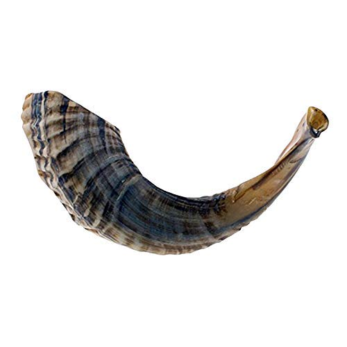 "Bag Shofar (KOSHER ODORLESS NATURAL SHOFAR | Genuine Rams Horn | Smooth Mouthpiece for Easy Blowing | Includes Velvet like Drawstring Bag and Shofar Blowing Guide (12""-14""))"
