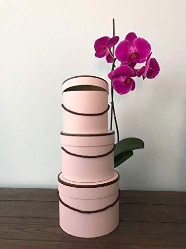 [USA-SALES] Premium Quality Round Flower Box, Flower Hat Box, Set of 3 pcs, with Lids, Size (S/M/L) (Powder with Brown Rim) -