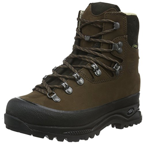 Hanwag Alaska Lady GTX, Women's Low Trekking and Walking Shoes Brown (Erde 56)