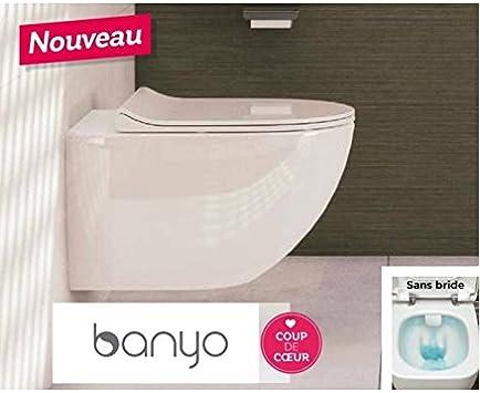 alterna-pack WC suspendida Daily o sin brida con asiento Slim freno de caída Ref 7748 C0036115: Amazon.es: Hogar