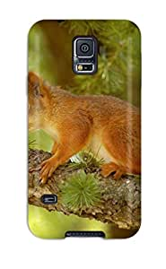 Cheap 5051951K34116285 Tpu Fashionable Design Squirrel Rugged Case Cover For Galaxy S5 New