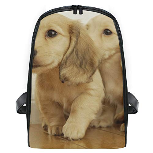 Lovely Golden Retriever Puppies School Backpack For Boys Kids Primary School Bags Children Backpacks