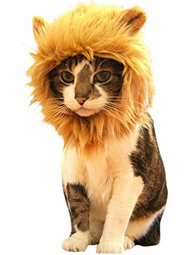 Cat Lion Costumes (Lion Mane for Cat Appreal, Pet Costume Lion Mane Wig Pet Cat Caps Cat Hat Dress up with Ears by IN HAND)