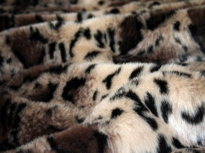 Tiger Dreamz Luxury Bed 39x30,Clouded Leopard