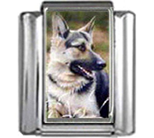 Stylysh Charms German Shepherd Dog Photo Italian 9mm Link DG209