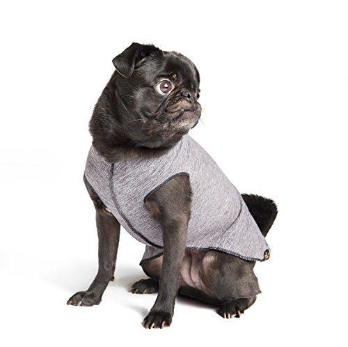Gold Paw Sun Shield Dog Tee - Grey Heather - Size 12