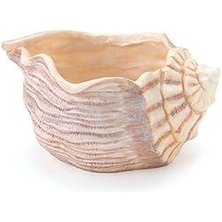Beautiful Seashell Planter/Vase Great Beach Decor