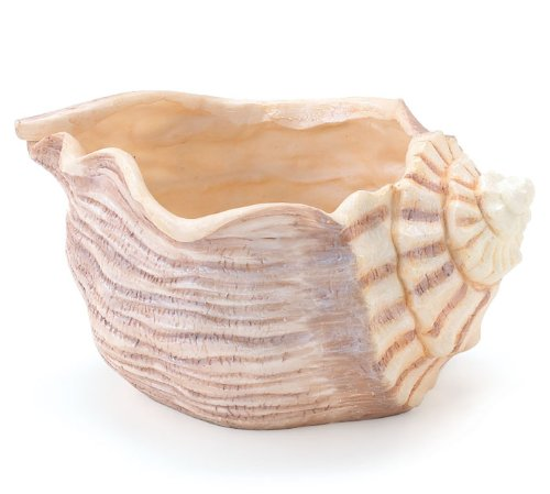 Cheap  Beautiful Seashell Planter/Vase Great Beach Decor