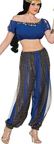 Dark Dancer Adult Costume, (Arabian Belly Dancer Halloween Costume)