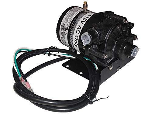 (Sundance Spas Pump: Laing 120V E10-Nshndnn1W-02 3/4