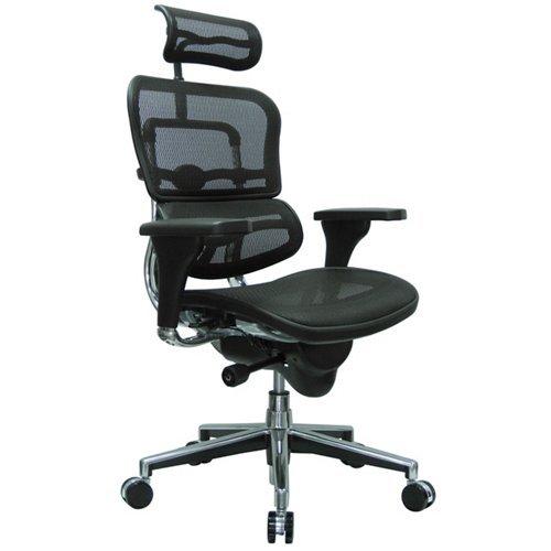 Eurotech Ergohuman Mesh Chair - 18.1A