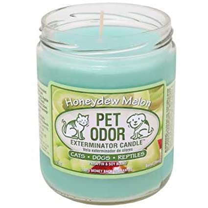 Pet Odor Exterminator Candle Honeydew Melon