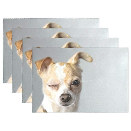 Aluy's boutique Winking Chihuahua Appears to Say Hello Placemats Home Dinner Decorative, Heat-Resistant and Stain Resistant Dining Table Mats Washable Place Mats, Set of 6, (18x12inch)